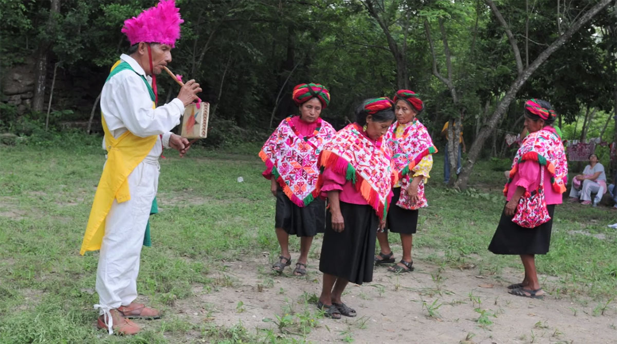 Adventures in the Field: Mexico Program Research