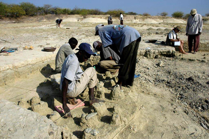 Searching for Human Origins in Kenya and on the Mall