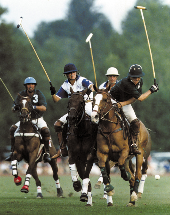 Polo has been played in many forms throughout the Silk Road and beyond. Polo clubs continue the tradition in the United States.