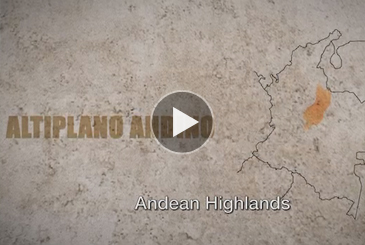 Andean Highlands traditions at the Festival