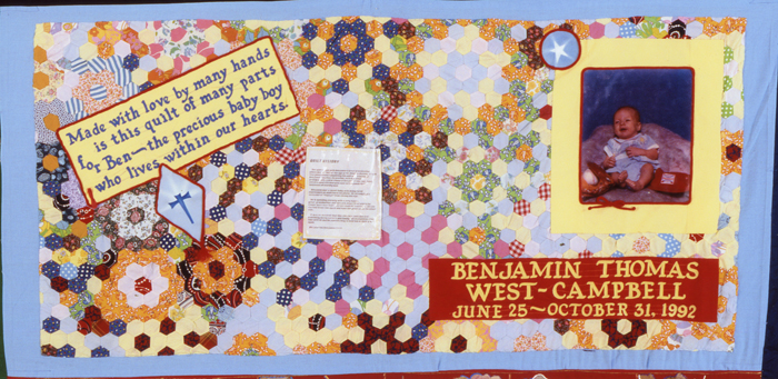Panel made for Benjamin Thomas West-Campbell, block 03154.