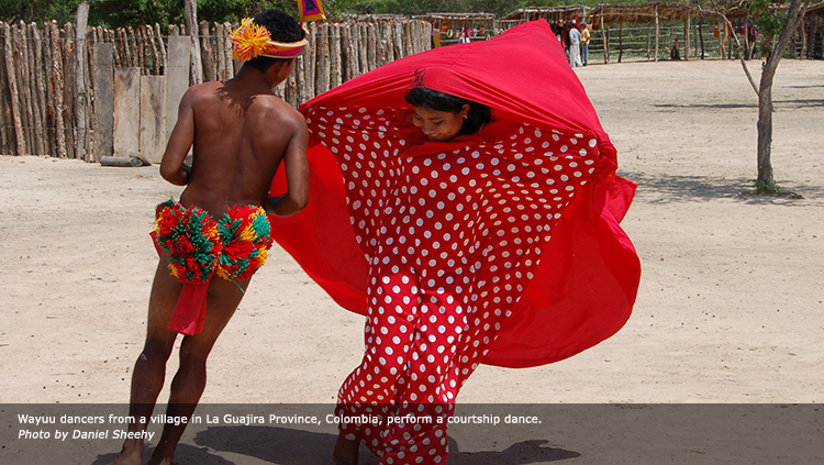 Wayuu dancers from a village in La Guajira Province, Colombia, perform a courtship dance. Photo by Daniel Sheehy