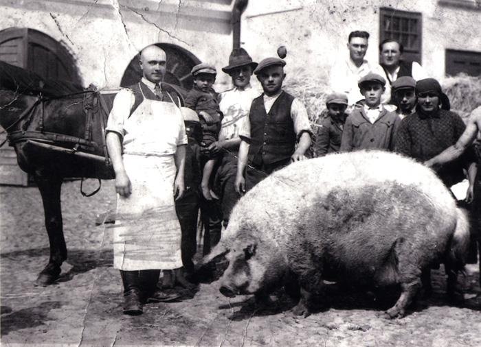 Members of a large Hungarian family pose with their Mangalitsa pig, ca. 1930.