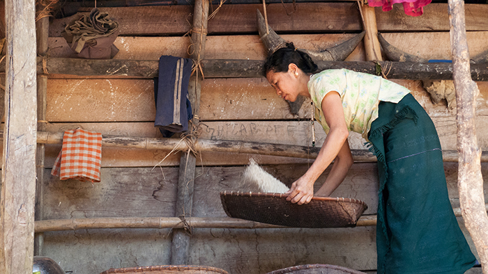 Koro speaker Yadjik Jaboju threshes rice in Arunachal Pradesh, India.