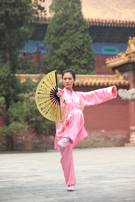 Tian Mengyi practicing tai chi in a public park in Beijing, 2011. Click to enlarge.