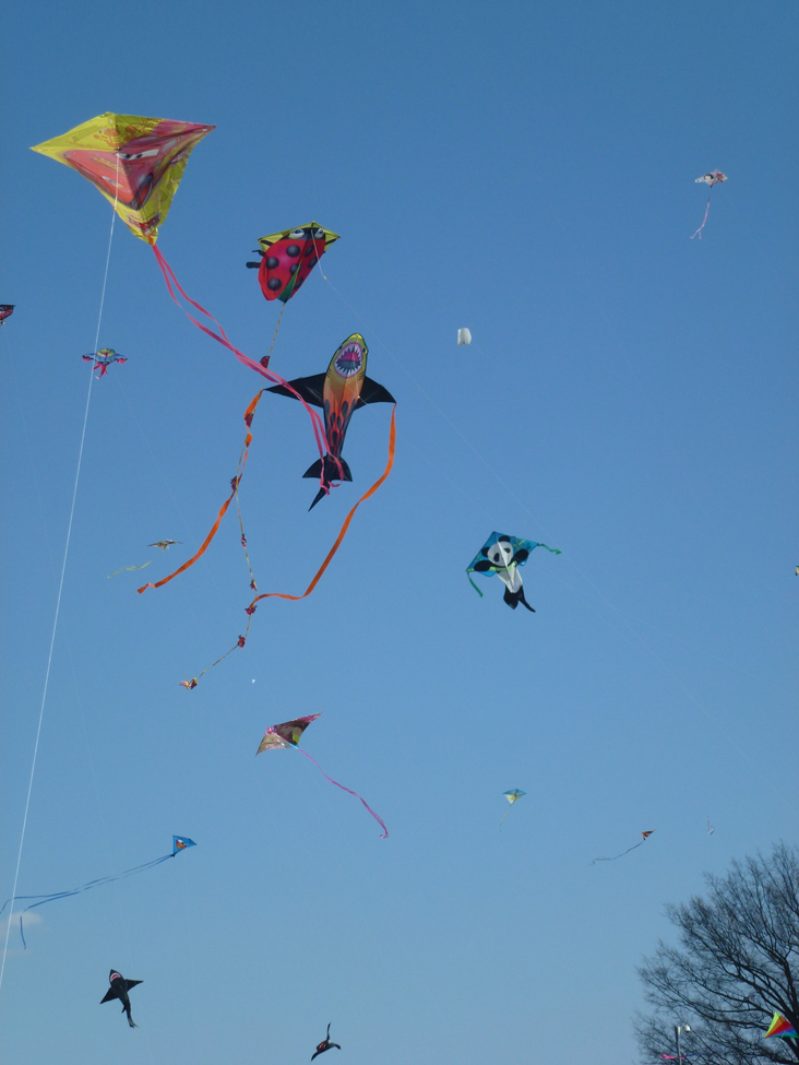 Kites fill the sky in Washington, D.C., just as they do in China and elsewhere, 2013.