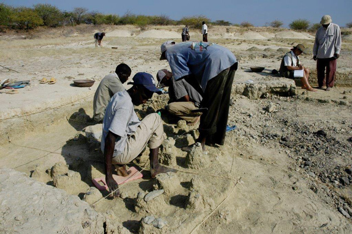 The excavation team at Olorgesailie finds multiple layers of handaxes and other ancient artifacts, indicating where early humans were making, using, and discarding their tools.