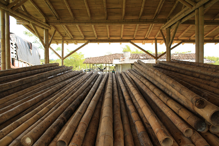 Warehouse of drying bamboo, photo by and courtesy of Ivonne Valencia