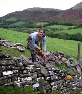My first day of walling in the UK, stripping out an eighteenth century farm wall in preparation for a total rebuild, near Pengenffordd, Wales, in the Rhiangoll Valley. This is where craft clicked for me.