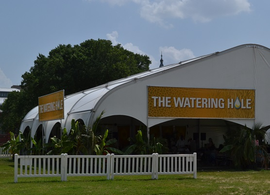 The Watering Hole features Tusker and Kingfisher lagers and live music. And shade.