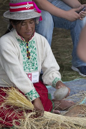 Alejandrina Huillca Puma pounded ichu grass with a rock to soften it and prepare it to be woven into rope for the Q'eswachaka bridge. Photo by Francisco Guerra, Ralph Rinzler Folklife Archives