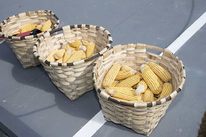 Corn used for races on the National Mall. Photo by Francisco Guerra, Ralph Rinzler Archives